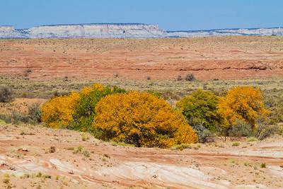 Durango, Silverton, Mesa Verde Colorado trip 10/23-26/20