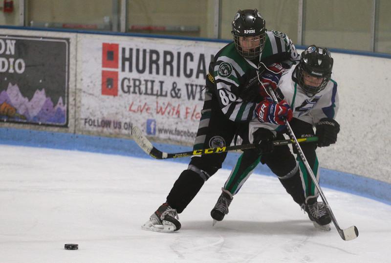 2016-Jan_29-Hockey-JPM0844.jpg