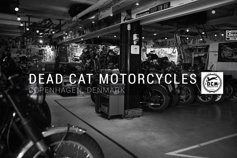 Dead Cat Motorcyles Banner.jpg