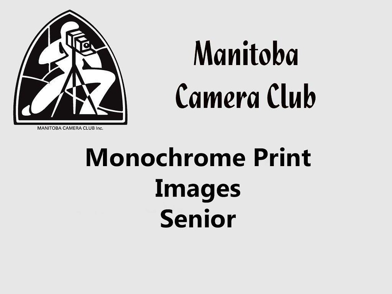 300-Monochrome Senior.jpg