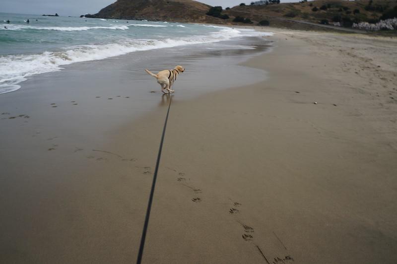 at the beach 2016 166.JPG