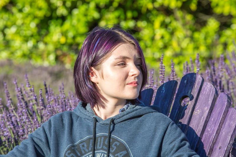 Evergreen Lavender Farm-107.JPG