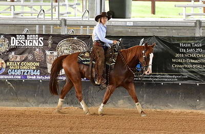 OPEN 2 REINED COWHORSE