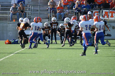 Little Panthers