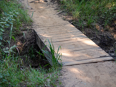 2020-06-14 - Horseshoe Trail Family Hike