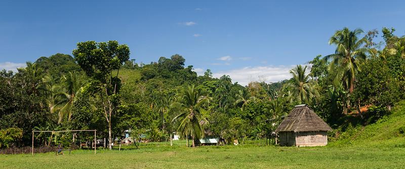 Urari, Panama-16.jpg