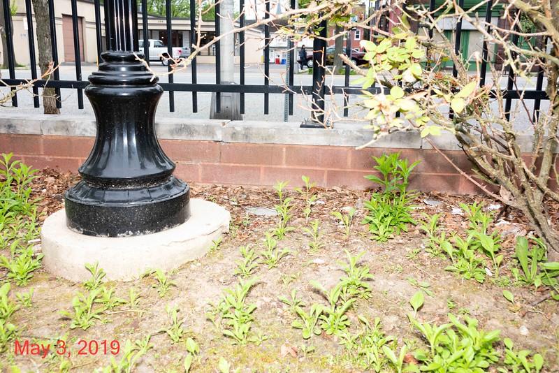 2019-05-03-365 E High & Parking Lot-023.jpg