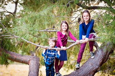 2016 Mini Session - Flynn Family