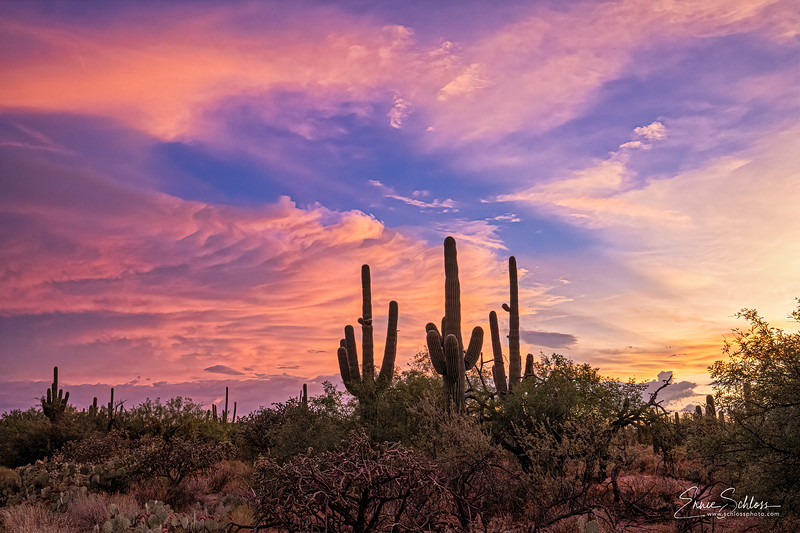 Sabino Sunset 7-26-2019a-.jpg