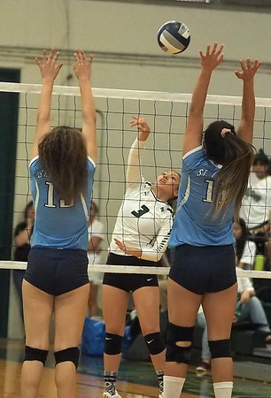 2017 volleyball senior aloha