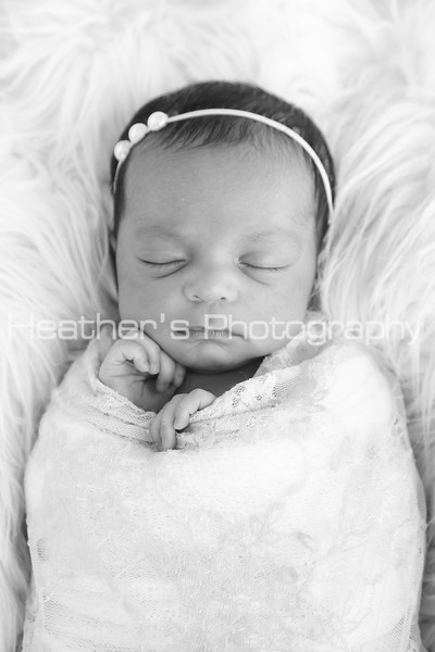 Zara's Newborn Gallery_300