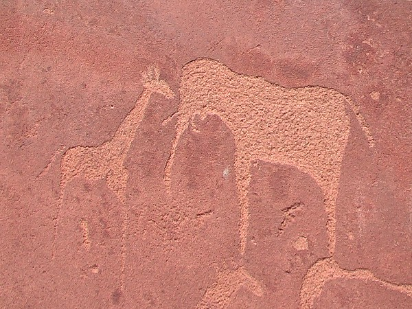 Petroglyph Rock Art at Twyfelfontein, Damaraland, Namibia - January 2005