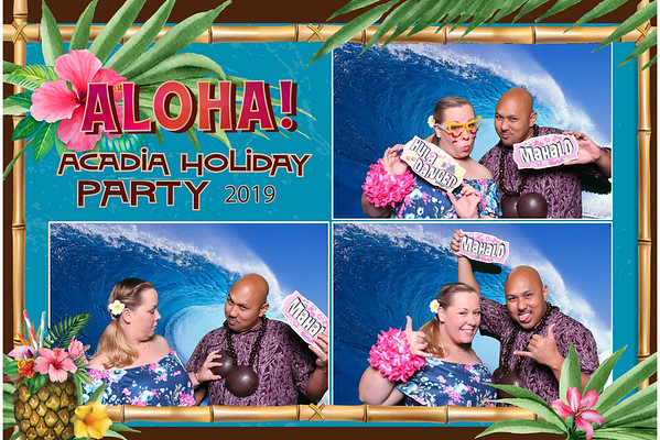 Acadia Holiday Party 2019