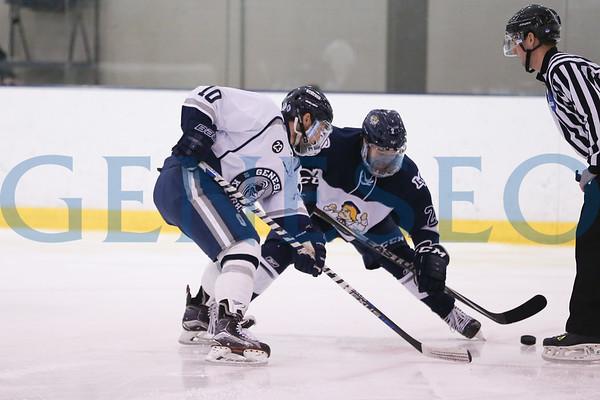 Men's Ice Hockey vs. Lebanon Valley