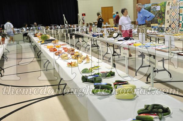Rec Center, Pie & Cake, Rides 08-27-11