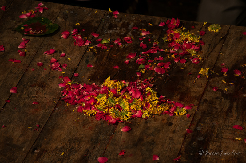 India-Varanasi-6615.jpg