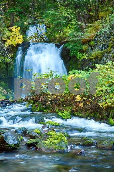 Twin Falls, Lewis River 5077_HDR.jpg