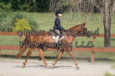 134Sierra MistCamryn LagomarsinoHeather L. HM Equestrian