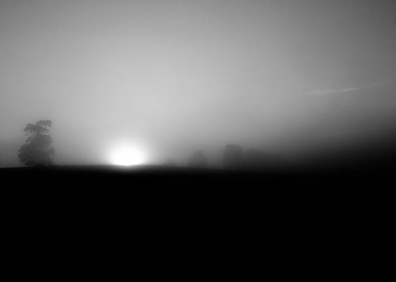 FoggyFarm1.jpg