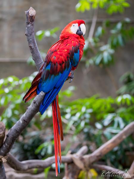 Santa Barbara Zoo 10-13-2018-064.jpg