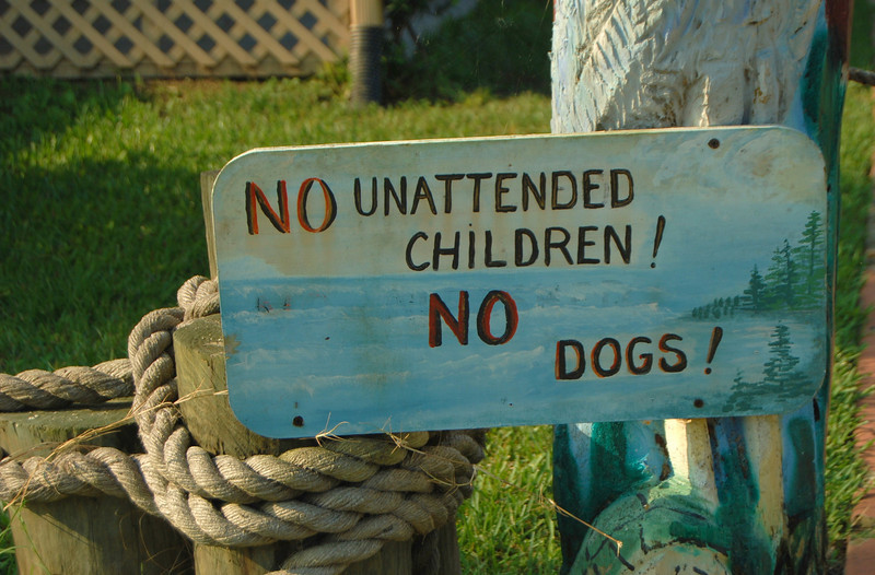 I think that they are afraid that children and dogs would be used to feed the gators