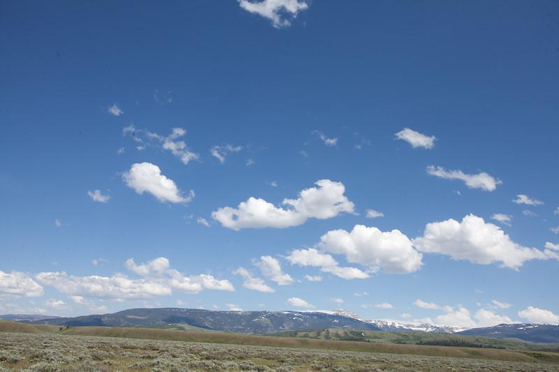 Landscape17.jpg