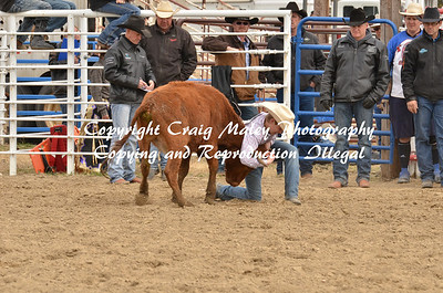 Chute Dogging 05-03-14