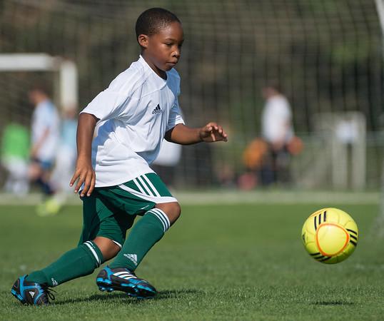 Salvo Soccer, White, U10, 8-4-12