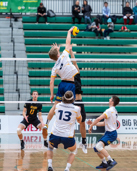 Volleyball UofA Bears vs UBC Thunderbirds