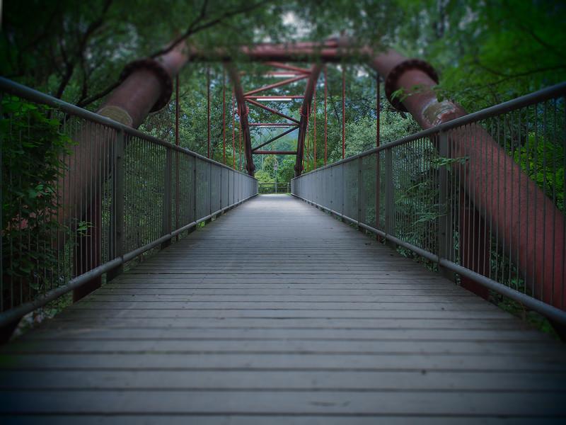 P9220050 ponte.jpg