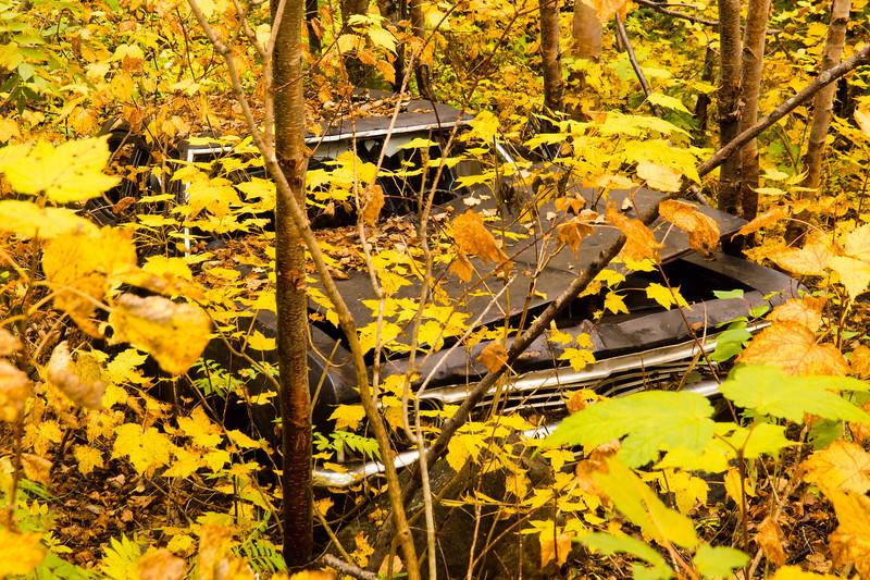 Vieux char dans l'bois