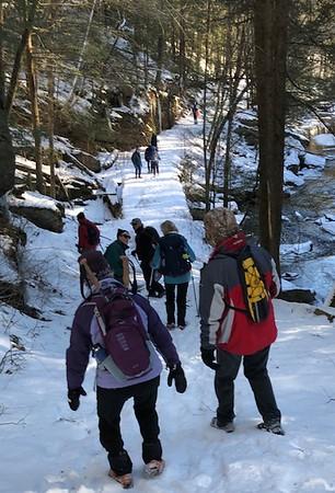 January 22 Wednesday Hike
