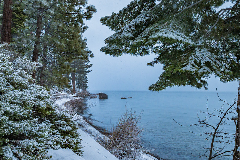 Tahoe in snow am 2.jpg