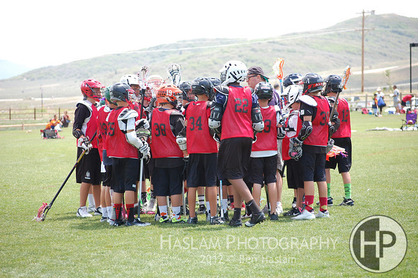 U13 - Blackhawks v. Dark Horse