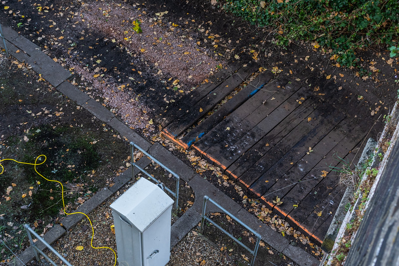 Fomer siding at Reedham Junction