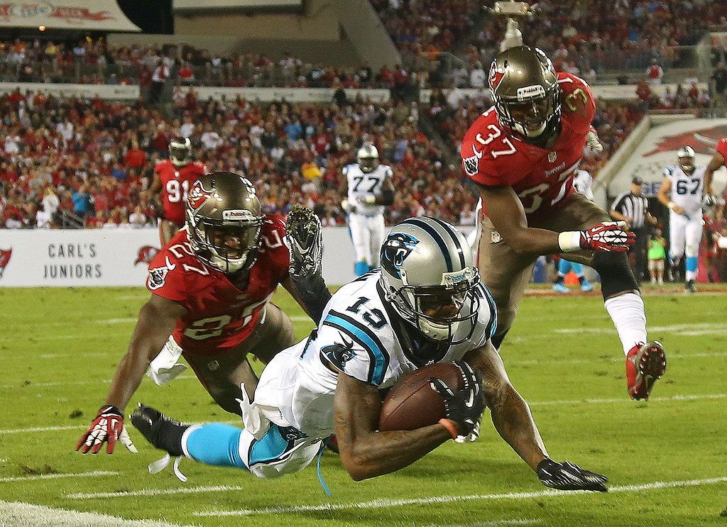 . TAMPA, FL - OCTOBER 24:  Ted Ginn #19 of the Carolina Panthers makes a catch during a game against the Tampa Bay Buccaneers at Raymond James Stadium on October 24, 2013 in Tampa, Florida.  (Photo by Mike Ehrmann/Getty Images)