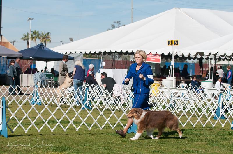20170205_Australian Shepherds_Lost Dutchman Kennel Club-29.jpg