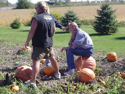 Pumpking Picking