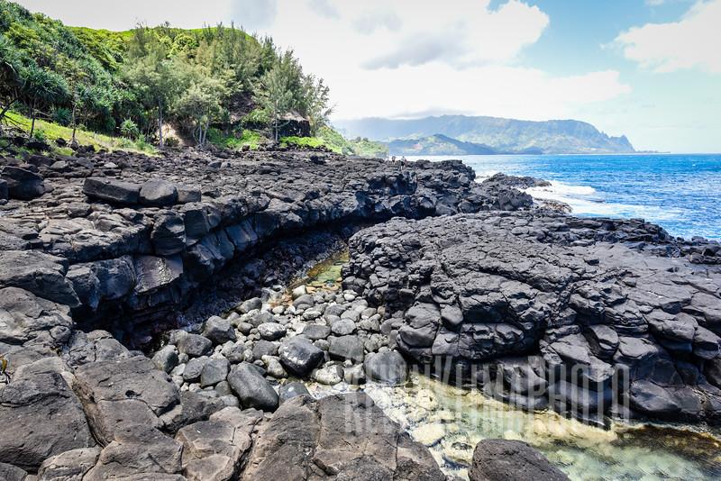 Kauai2017-251.jpg