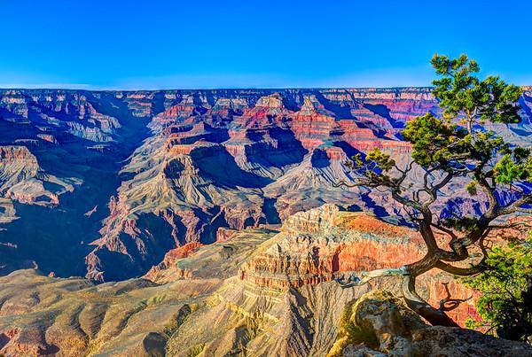Western and Southwestern Landscapes