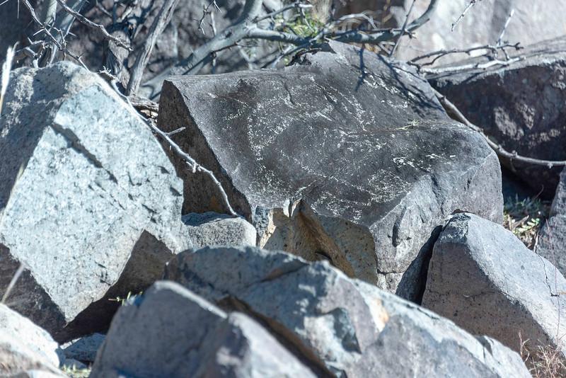 20181127-Petroglyphs-Tularosa-619606.jpg