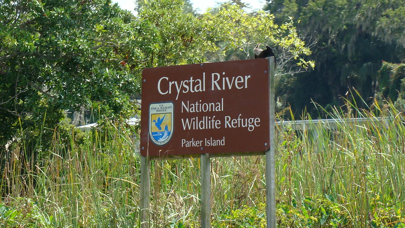 App.Trail Fall 2008,Fl. Maine 087.JPG