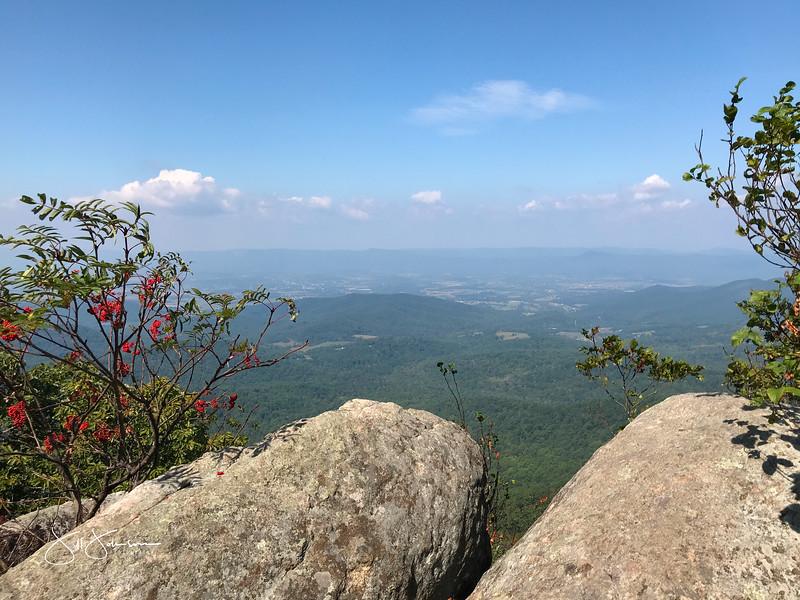 at hike-8944.jpg