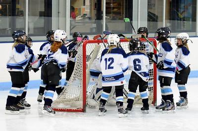 10U Girls vs. Cloquet (19-Dec-2013)