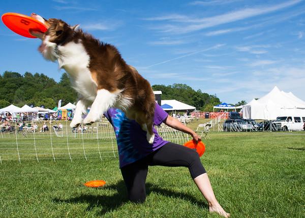 Quechee Balloon Fest 062118