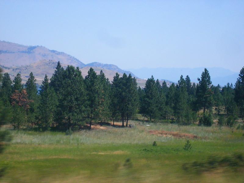 2008-07-24-YOCAMA-Montana_3224.jpg