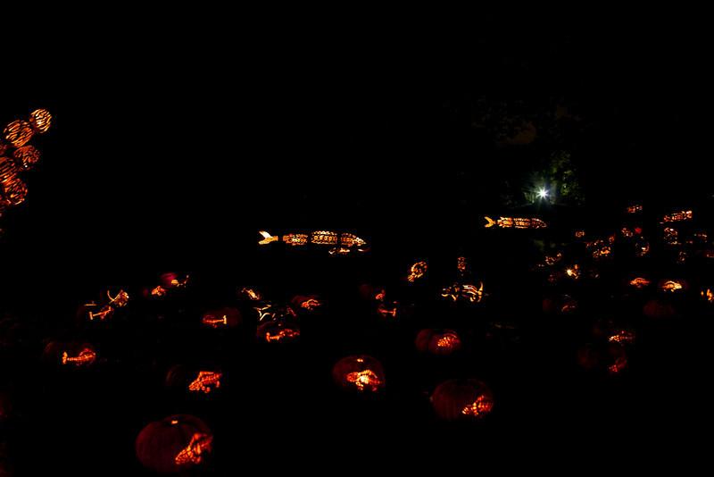 2010-10-24 at 22-10-59.jpg
