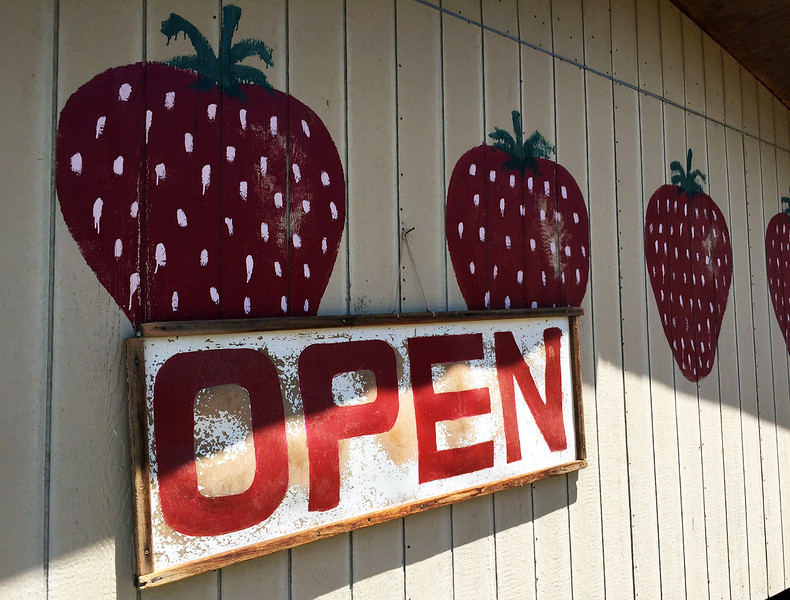 strawberry open.jpg