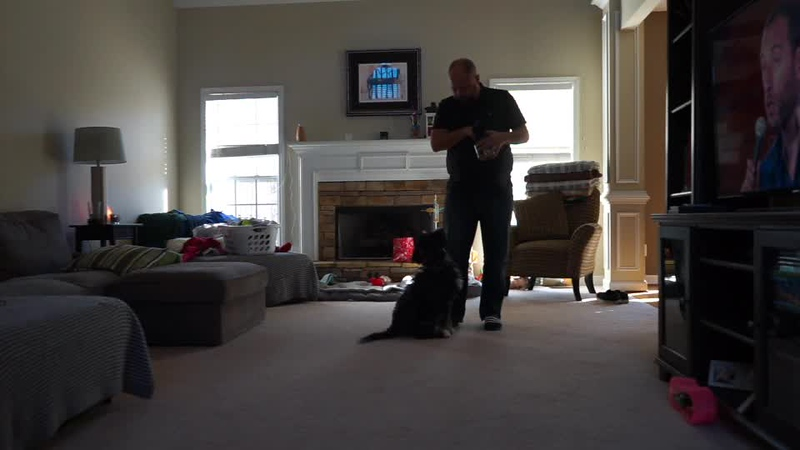 Juno Training Video 1