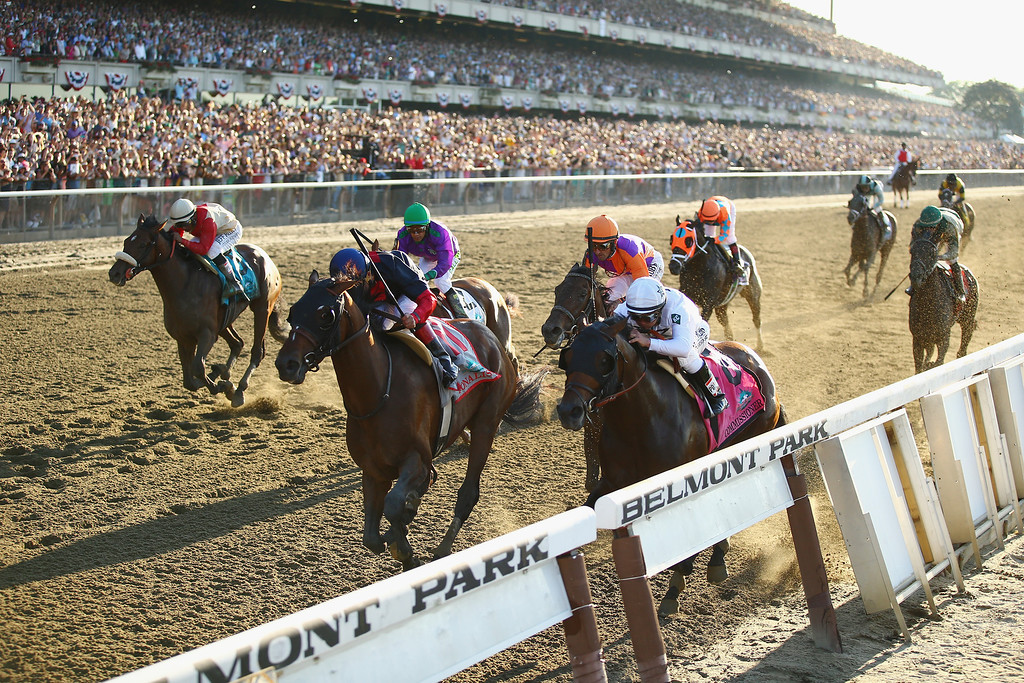 . ELMONT, NY - JUNE 07:  Tonalist #11, ridden by Joel Rosario, races to the finish line enroute to winning the 146th running of the Belmont Stakes at Belmont Park on June 7, 2014 in Elmont, New York.  (Photo by Al Bello/Getty Images)